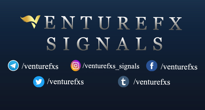 venture fx signals review